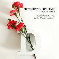 Blogtober, Day 5: Photography Challenge